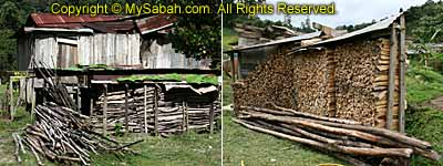 Firewood of Tataluan Village