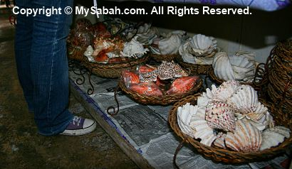 Giant clams in Handicraft Market