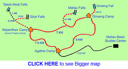 Trail of Maliau Basin