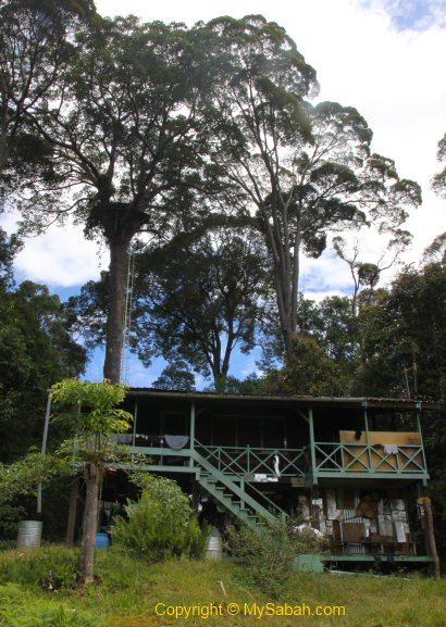 Observation Tower and Nepenthes Camp