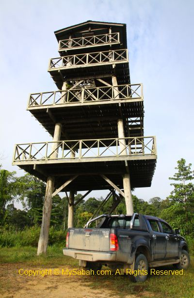 Maliau Rim Observation Tower