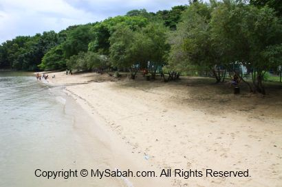 Beach of Usukan Cove Lodge