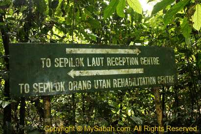 signage in Sepilok forest