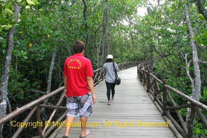 wooden boardwalk to Borneo Semporna Proboscis River Cruise