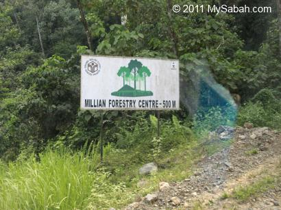 Millian Forestry Center