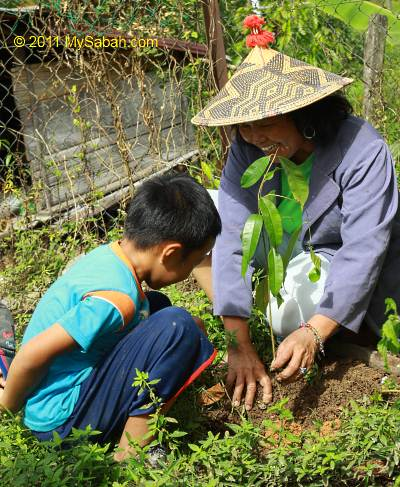 son and mother planting tree