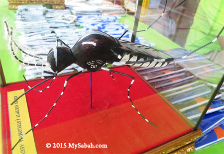 model of Aedes aegypti mosquito