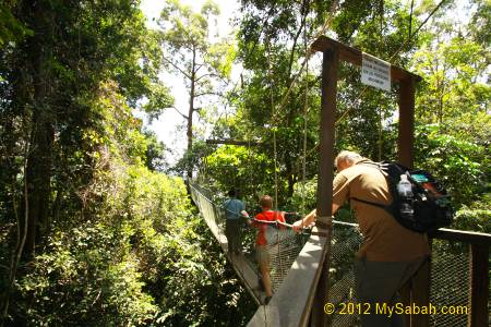 tourists on Canopy Walkway