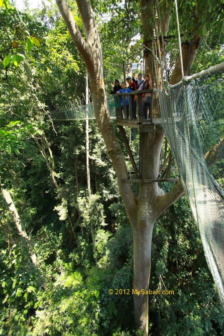 family on the platform of Canopy Walkway & Poring Canopy Walkway the highest in Sabah - MySabah.com