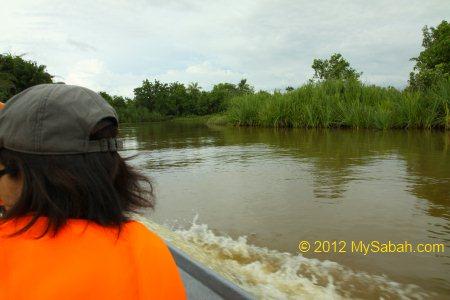 Bongawan River