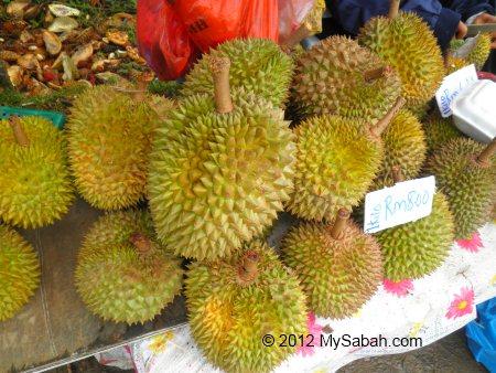 durian of Sabah