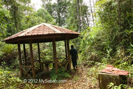 shelter near Tawai Waterfall