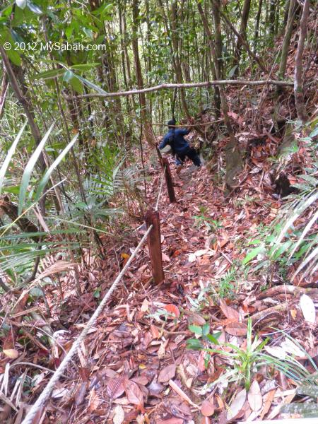 descending to Tawai Waterfall