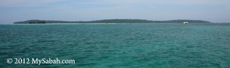 Pulau Tiga, Survivor Island