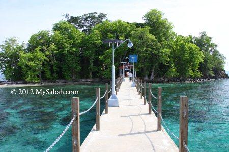 Snake Island of Pulau Tiga Park