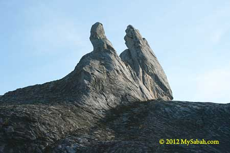 Donkey Ear Peak of Mt. Kinabalu