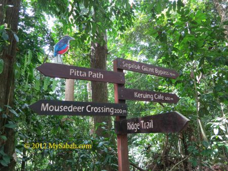 signage of RDC jungle trail