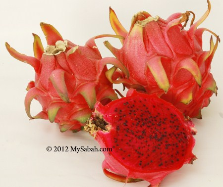 pitaya (red flesh)