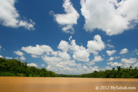 Kinabatangan Floodplain