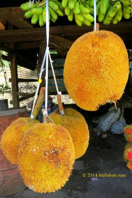 tarap fruits for sale