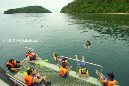 snorkeling at reef pontoon