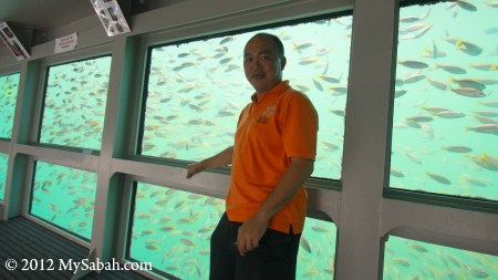 underwater observatory of reef pontoon