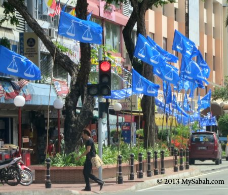 Barisan Nasional flags