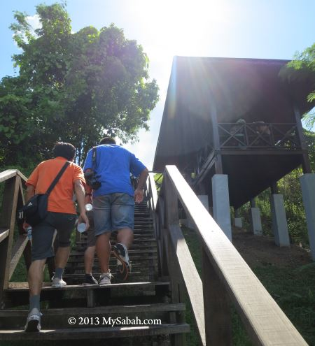 wooden steps to the top of Bukit Tengkorak