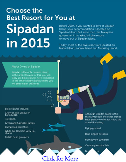 Infographics: Best Resort for your Sipadan Stay