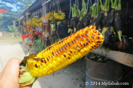 close up of grilled corn