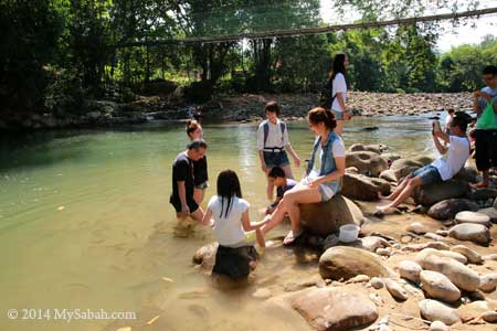 fish massage at Moyog River
