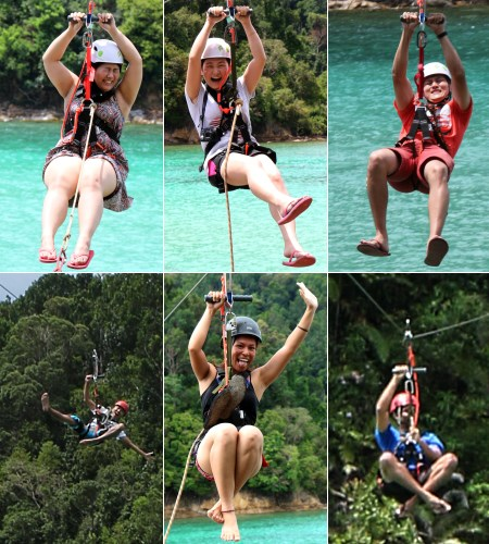 expressions on flying fox