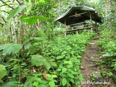 camp of Lupa Masa