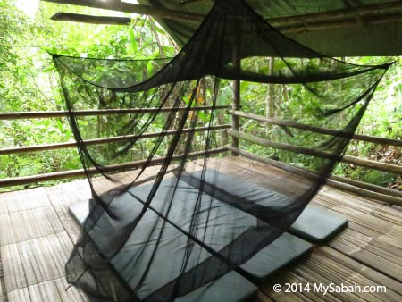 camper bed of Lupa Masa Jungle Camp