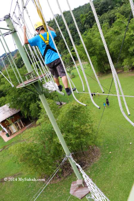 high ropes challenge: Spaghetti Walk