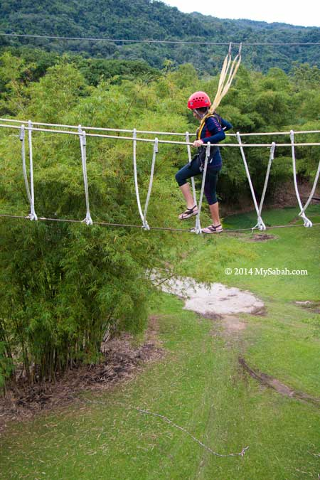 high ropes challenge: Burma Bridge