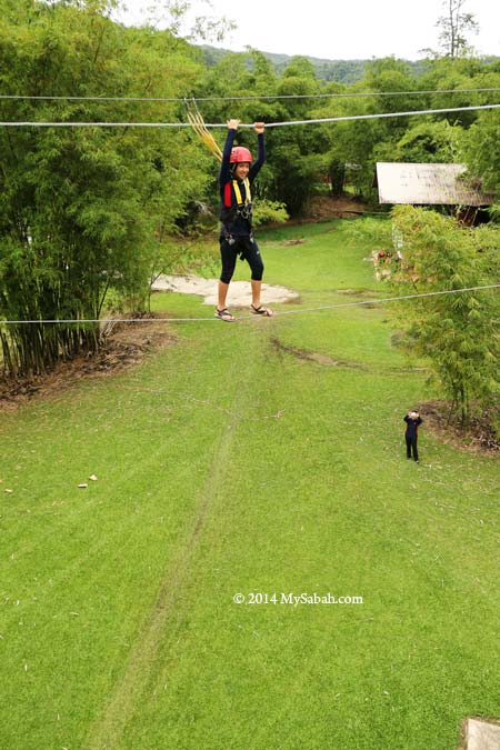high ropes challenge: Postman's Walk
