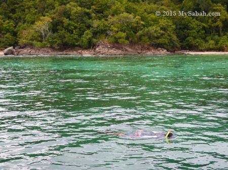 snorkelling at Sapi Island