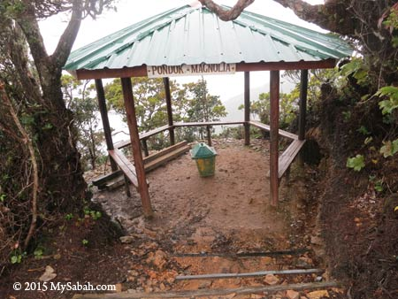 Magnolia Shelter