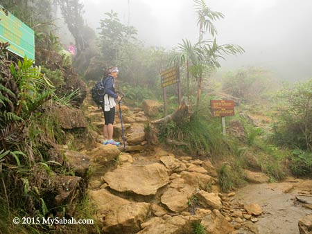 meeting point of Timpohon and Mesilau Trail