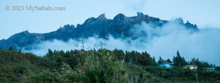 Mt. Kinabalu in Mesilau