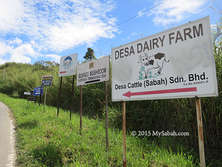 signage to Desa Dairy Farm