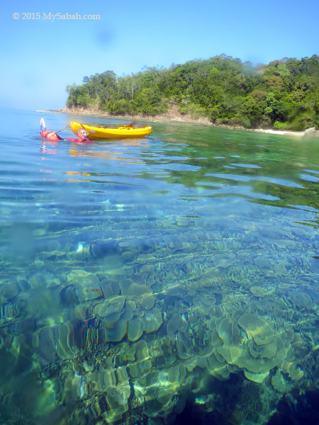 go down for snorkelling