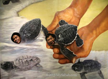 releasing baby turtles in 3D Wonders Museum