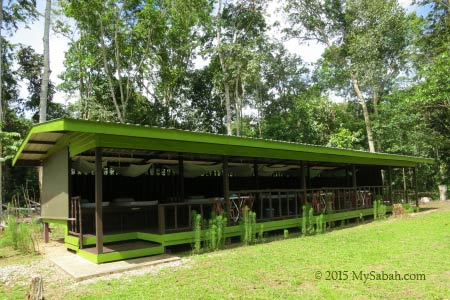 accommodation of Tanjung Bulat Jungle Camp