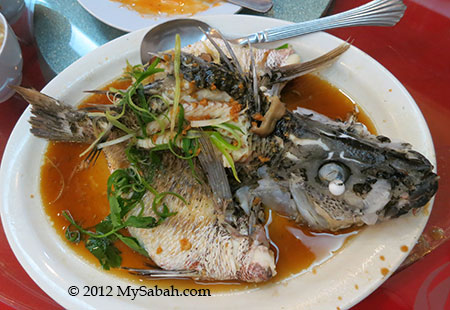 Steamed red snapper (清蒸红潮)