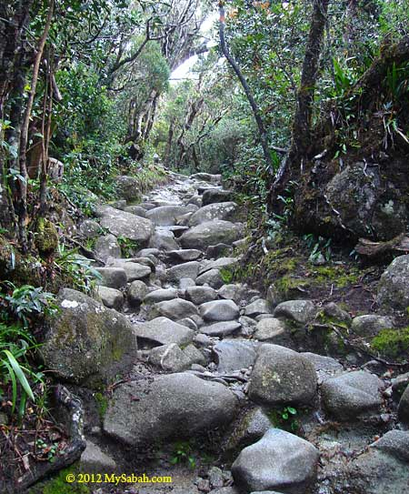 trail with big boulders