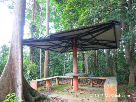 shelter on Bukit Tongkat Ali Hill