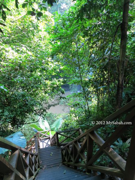 wooden staircase to Madai Waterfall