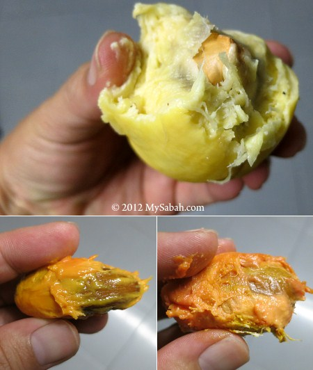 durian flesh in 3 color
